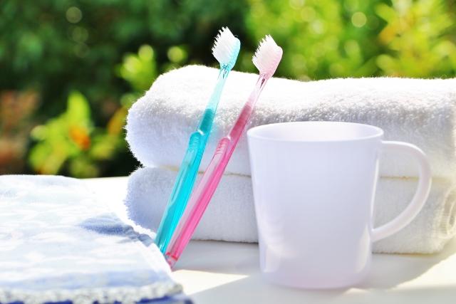歯の手入れ方法